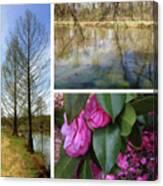 Water Garden Three Views Canvas Print