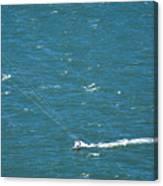 Water Glider Canvas Print