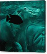 Water Horse Ballet Canvas Print