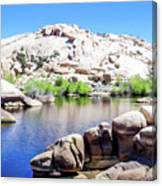 Water In The Desert Canvas Print