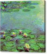 Water Lilies 1917 6 Canvas Print