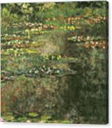 Water Lilies 4 Canvas Print