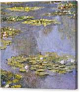 Water Lilies 8 Canvas Print