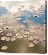 Water Lilies In Schoenbrunn Vienna Austria Canvas Print