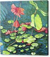 Water Lillies 1 Canvas Print