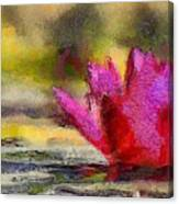 Water Lily - Id 16235-220419-3506 Canvas Print