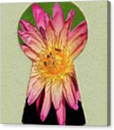 Water Lily Keyhole Canvas Print