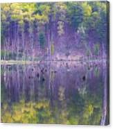 Water Logged Canvas Print