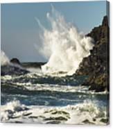 Water Meets Rock Canvas Print