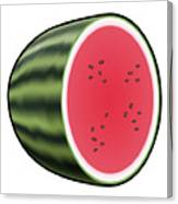 Water Melon Outlined Canvas Print