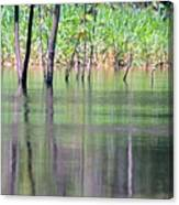 Water Reflections On Amazon River Canvas Print