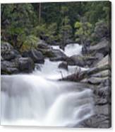 Water Running From The Woods Canvas Print