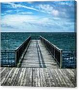 Water Watching Canvas Print