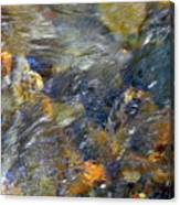 Water Whimsy 173 Canvas Print
