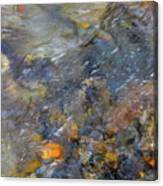 Water Whimsy 176 Canvas Print