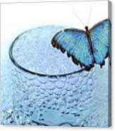 Water With Butterfly Canvas Print