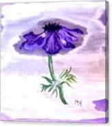 Watercolor Anomone Canvas Print