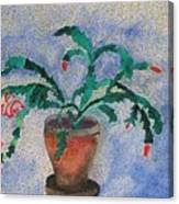 Watercolor Christmas Cactus First Bloom Canvas Print