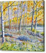 Watercolor - Colorado Autumn Forest And Landscape Canvas Print