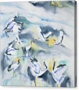 Watercolor - Crane Ballet Canvas Print