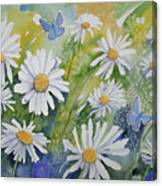 Watercolor - Daisies And Common Blue Butterflies Canvas Print