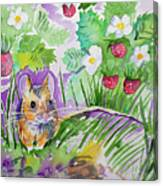 Watercolor - Field Mouse With Wild Strawberries Canvas Print