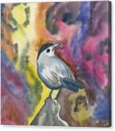 Watercolor - Gray Catbird Canvas Print