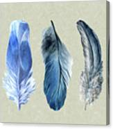 Watercolor Hand Painted Feathers Canvas Print