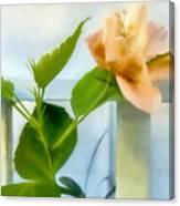 Watercolor Hibiscus Canvas Print