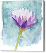 Watercolor Of Lotus Flower. Canvas Print