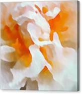 Watercolor Peonie Canvas Print
