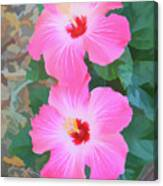 Watercolor Pink Hibiscus Blooms Vertical Canvas Print