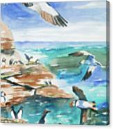 Watercolor - Seabirds Of The North Atlantic Canvas Print