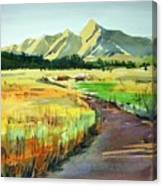 Watercolor4476 Canvas Print