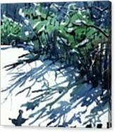 Watercolor4597 Canvas Print