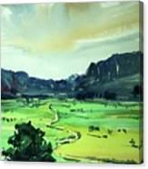 Watercolor4612 Canvas Print