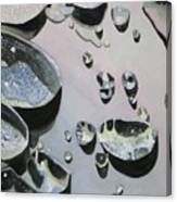 Waterdrops Canvas Print