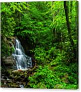 Waterfall And Rhododendron In Bloom Canvas Print