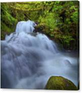 Waterfall At Shepperds Dell Falls Canvas Print
