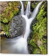 Waterfall Atop Wolf Creek Pass - Colorado - Nature Canvas Print