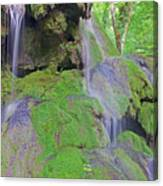 Waterfall Details Canvas Print