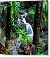 Waterfall El Yunque National Forest Mirror Image Canvas Print
