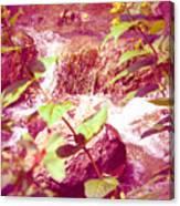 Waterfall Garden Pink Falls Canvas Print