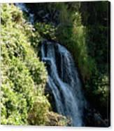 Waterfall I Canvas Print