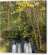 Waterfall In A Park, Whatcom Creek Canvas Print