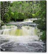 Waterfall In Cradle Mountain Canvas Print