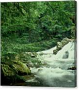 Waterfall In Hemlock Forest Canvas Print