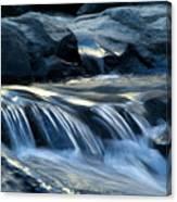 Waterfall Locomotion Canvas Print