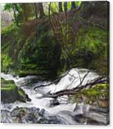 Waterfall Near Tallybont-on-usk Wales Canvas Print