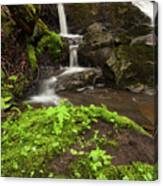 Waterfall Oasis  Canvas Print